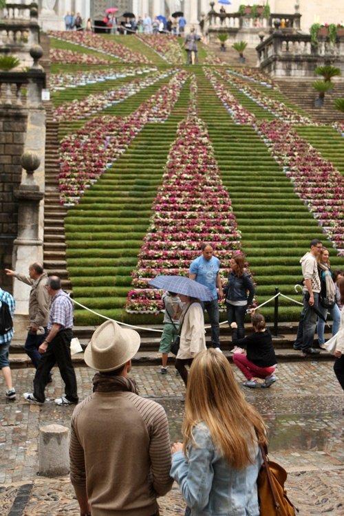 Girona se viste de flores ciudades eco viajes Viveros en girona