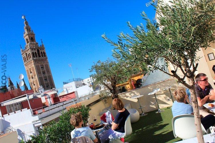 Sevilla Desde Las Alturas Tres Terrazas Al Sol De Enero